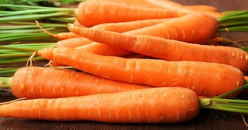 Properties and benefits of carrots