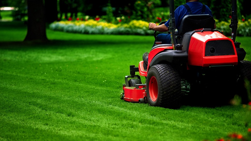 Tips for lawn maintenance