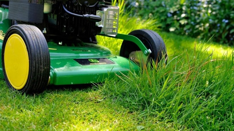 7 Tips for Lawn Maintenance