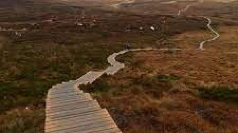 Three Fantastic Places to Walk Near Carrickmacross